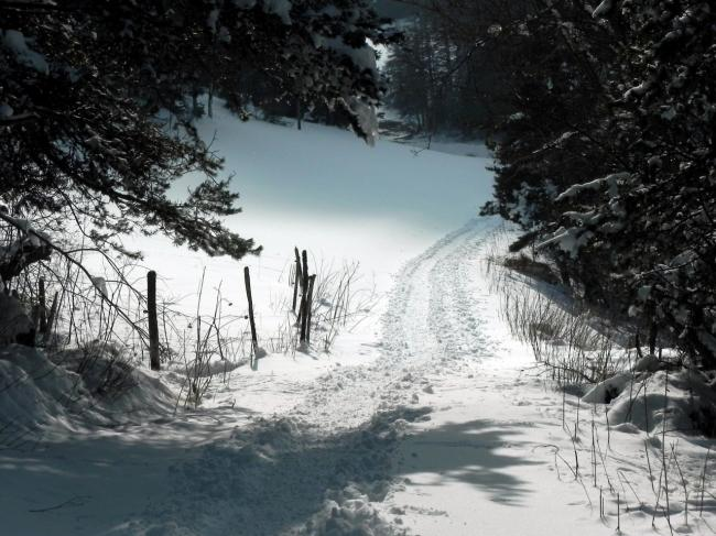 Blanc chemin